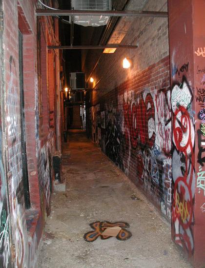 Ann Arbor Alleyway